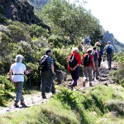 Wandergruppe Teneriffa