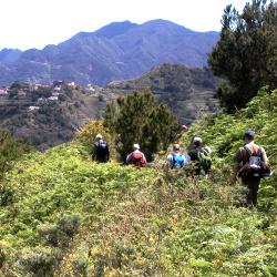Wandergruppe11Teneriffa